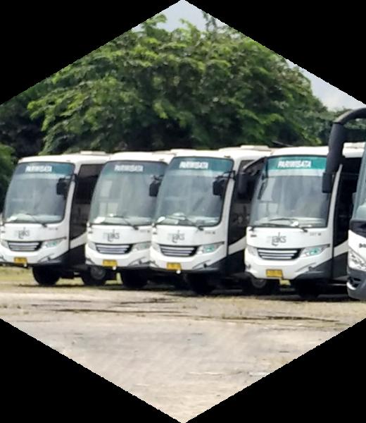 Bus Pariwisata Medium